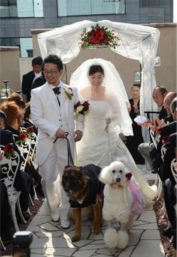結婚式退場.jpg