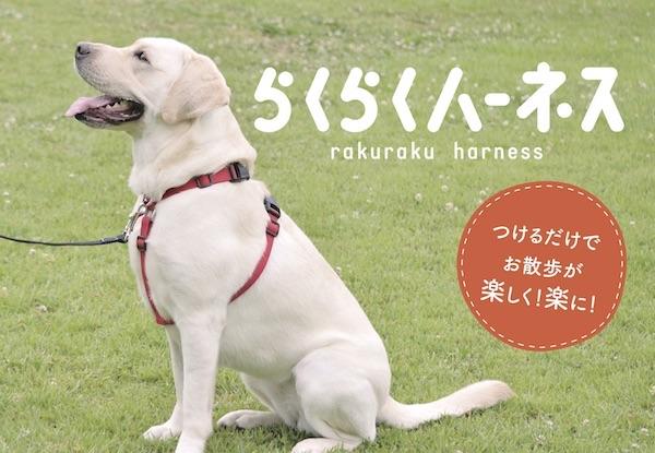 らくらくハーネス ロゴ.jpg