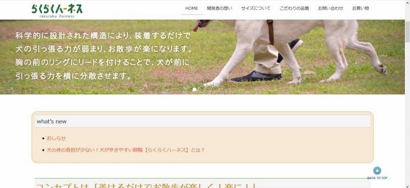 プレゼンテーション1 (800x368).jpg