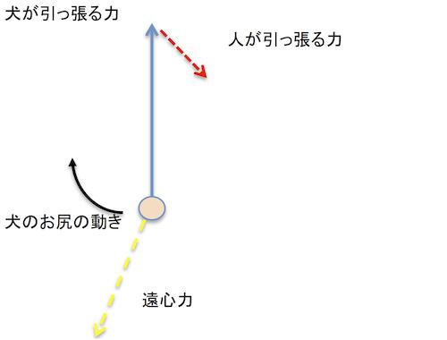 らくらくハーネスの力の分解図 5.png