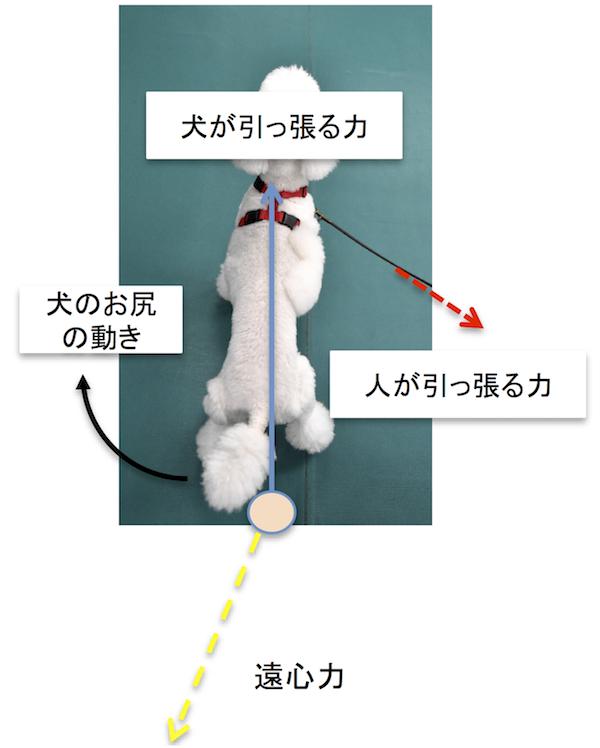 らくらくハーネスの力の分解図 7.png