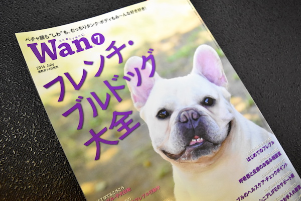 表紙(wan).jpg