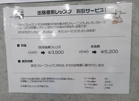 DSC_3253.JPG