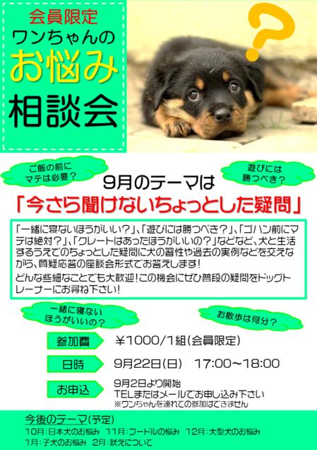 201909相談会.png