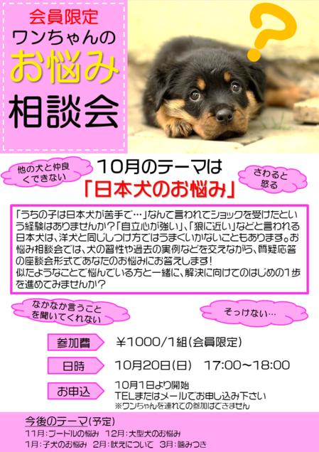 201910相談会.png