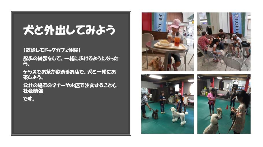 ドッグカフェ体験.jpg